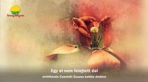 Egy el nem felejtett dal – emlékezés Cserháti Zsuzsa kettős életére