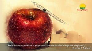 Korunk népbetegsége: mitől lesz valaki cukorbeteg?