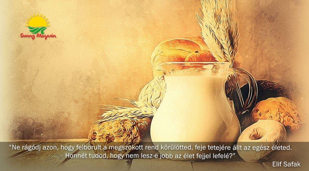 glutén és laktóz
